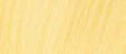 NLight Yellow