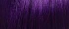 3T1B/Purple